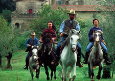 Western Riding in Tuscany - Center Based Star Ride Option