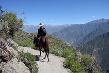 Peru-Arequipa-Colca Canyon Explorer Ride on Peruvian Pasos