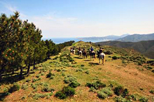 Spain-Catalonia-Coastal Gourmet Passion Ride
