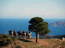 Spain-Catalonia-Ride and Swim in Catalonia
