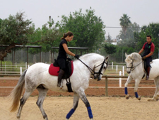 Classical Dressage Clinic - in Southern Spain