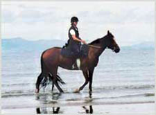 Ireland-Sligo-Riding by the Sea