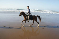Morocco-Morocco-Riding by the Sea in Southern Morocco
