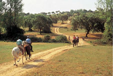 Portugal-Alto Alentejo-Royal Horse Trails