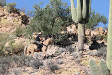 USA-Arizona-Cross Country Superstitions Trail