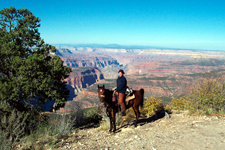 USA-Arizona-Geronimo Trail to the Grand Canyon