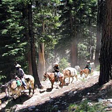 USA-California-Tuolumne Meadows Ride - Yosemite