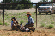 Southwest Working Cattle Ranch
