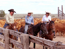 USA-New Mexico-Southwest Working Cattle Ranch