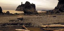 USA-Washington-Vancouver Island - Olympic Peninsula Hiker