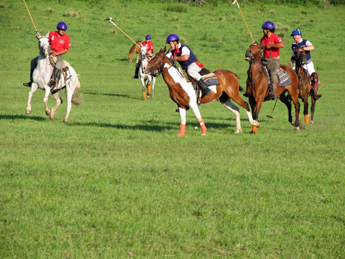 Horseback Gallery For Argentina Equestrian Vacations