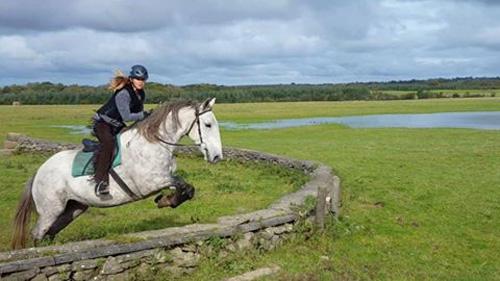 Horseback Gallery For Ireland Horseback Riding Tours Connemara Europe