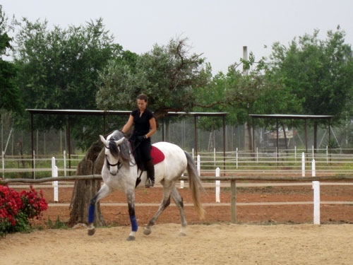 http://www.hiddentrails.com/_templateresources/images/gallery_500/IT-SPSR30C/01_spain_andalusia_epona_riding_center1.jpg