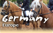 Horseback riding vacations in Germany, Black Forest