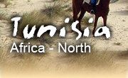 Horseback riding vacations in Tunisia
