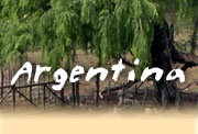 Horseback riding vacations in Argentina, Northern Patagonia