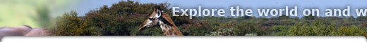 Equestrian tours in South Africa, Waterberg