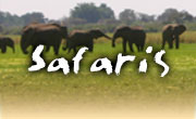 Safaris vacations in Botswana, Okavango Delta