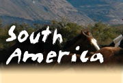 Horseback riding vacations in South America