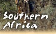 Horseback riding vacations in Southern Africa