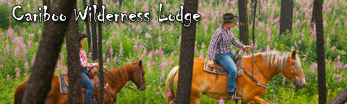 Cariboo Wilderness Lodge - Siwash Lake Ranch