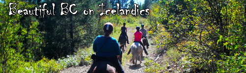 BC on Icelandics