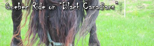 "Quebec Ride on ""Black Canadians"""