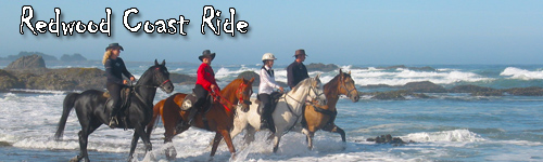 Redwood Coast Ride