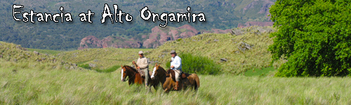 Estancia at Alto Ongamira