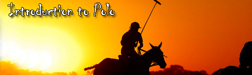 Introduction to Polo