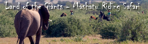 Land of the Giants - Mashatu Deluxe Safari