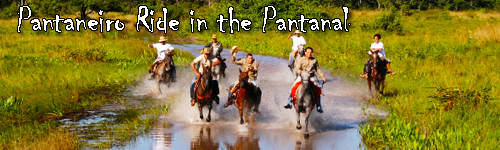 Pantaneiro Ride in the Pantanal