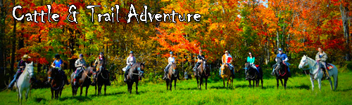 Cattle & Trail Adventure in Quebec