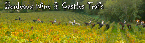 Bordeaux Wine & Castles Trails