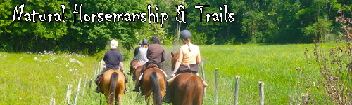 Natural Horsemanship & Trails