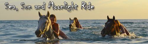 Sea, Sun and Moonlight Ride on Crete