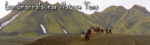 Landmannalaugar Nature Tour
