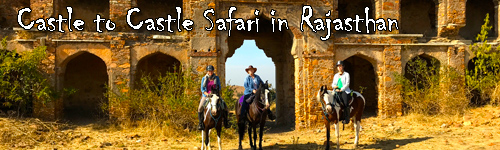 Castle to Castle Safari in Rajasthan