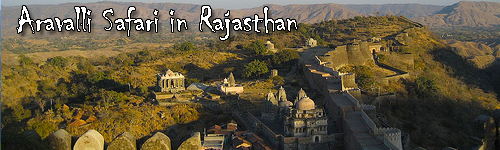 Aravalli Safari in Rajasthan