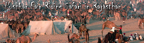 Pushkar Fair Riding Safari in Rajasthan