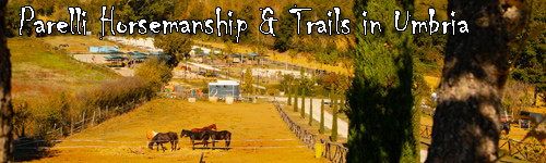 Parelli Natural Horsemanship & Trails in Umbria