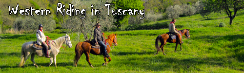 Western Riding in Tuscany