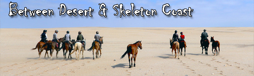 Between Desert & Skeleton Coast