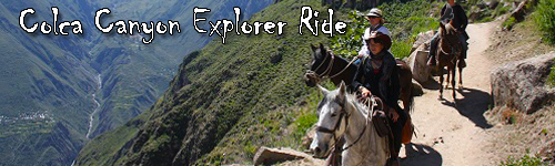 Colca Canyon Explorer Ride on Peruvian Pasos