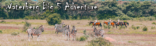 Waterberg Big 5 Adventure