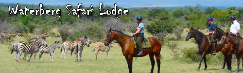 Waterberg  Safari Lodge