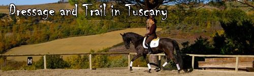Dressage and Trail in Tuscany