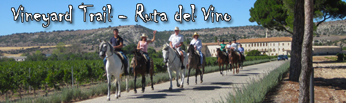 Vineyard Trail - Ruta del Vino