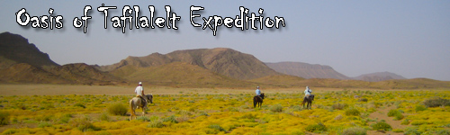 Oasis of Tafilalelt Expedition