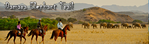 Damara Elephant Trail to Skeleton Coast